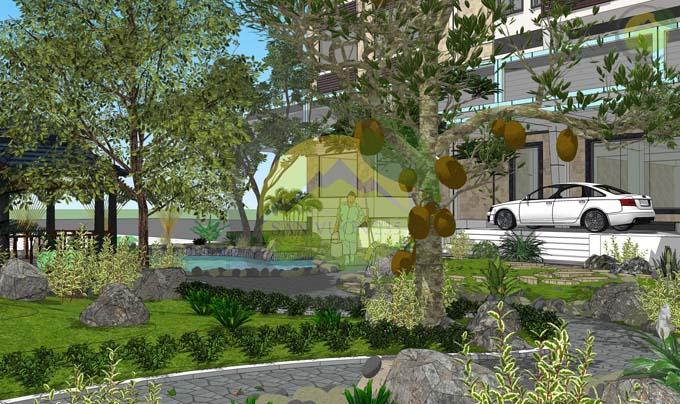 Thiết kế sân vườn đẹp trước nhà 2