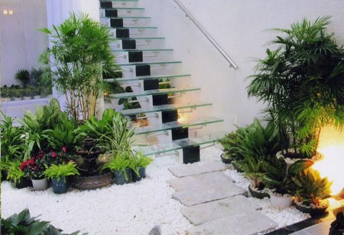 Thiết kế tiểu cảnh sân vườn 11
