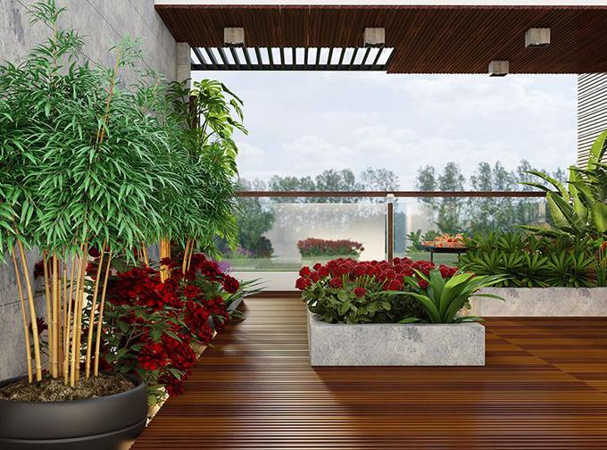Thiết kế tiểu cảnh sân vườn 4