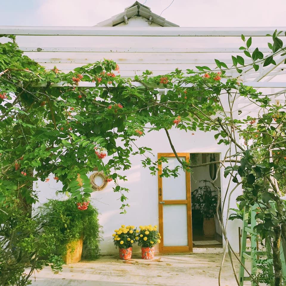 mẫu tiểu cánh sân vườn đẹp
