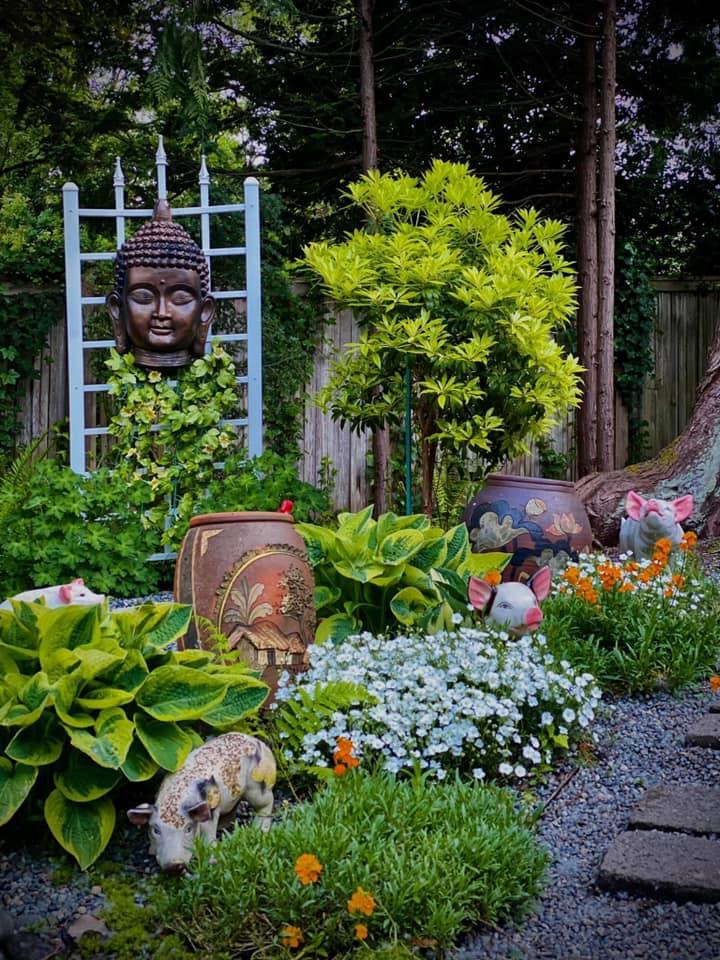 thiết kế tiểu cảnh sân vườn trước nhà