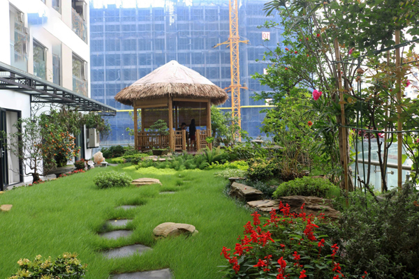 mẫu thiết kế sân vườn trước nhà