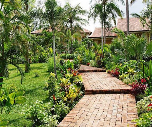 sân vườn việt nam
