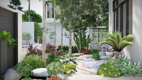 Thiết kế sân vườn sau nhà