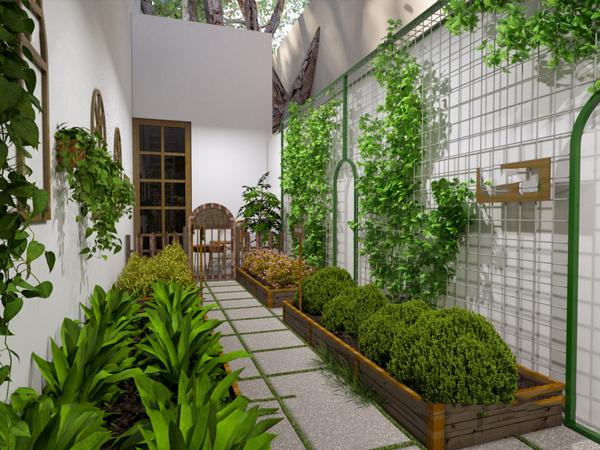 Thiết kế vườn trồng rau